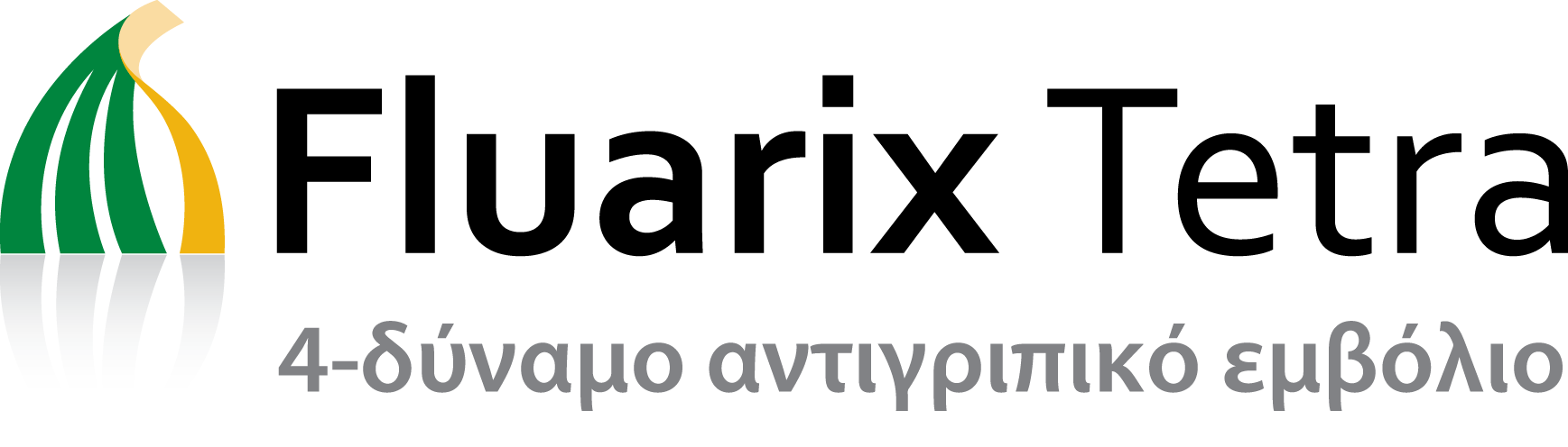 FluarixTetra Logo with Tagline